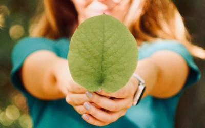 L'importanza di un ambiente sano per la nostra salute